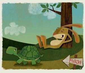 Tortoise & Hare Story