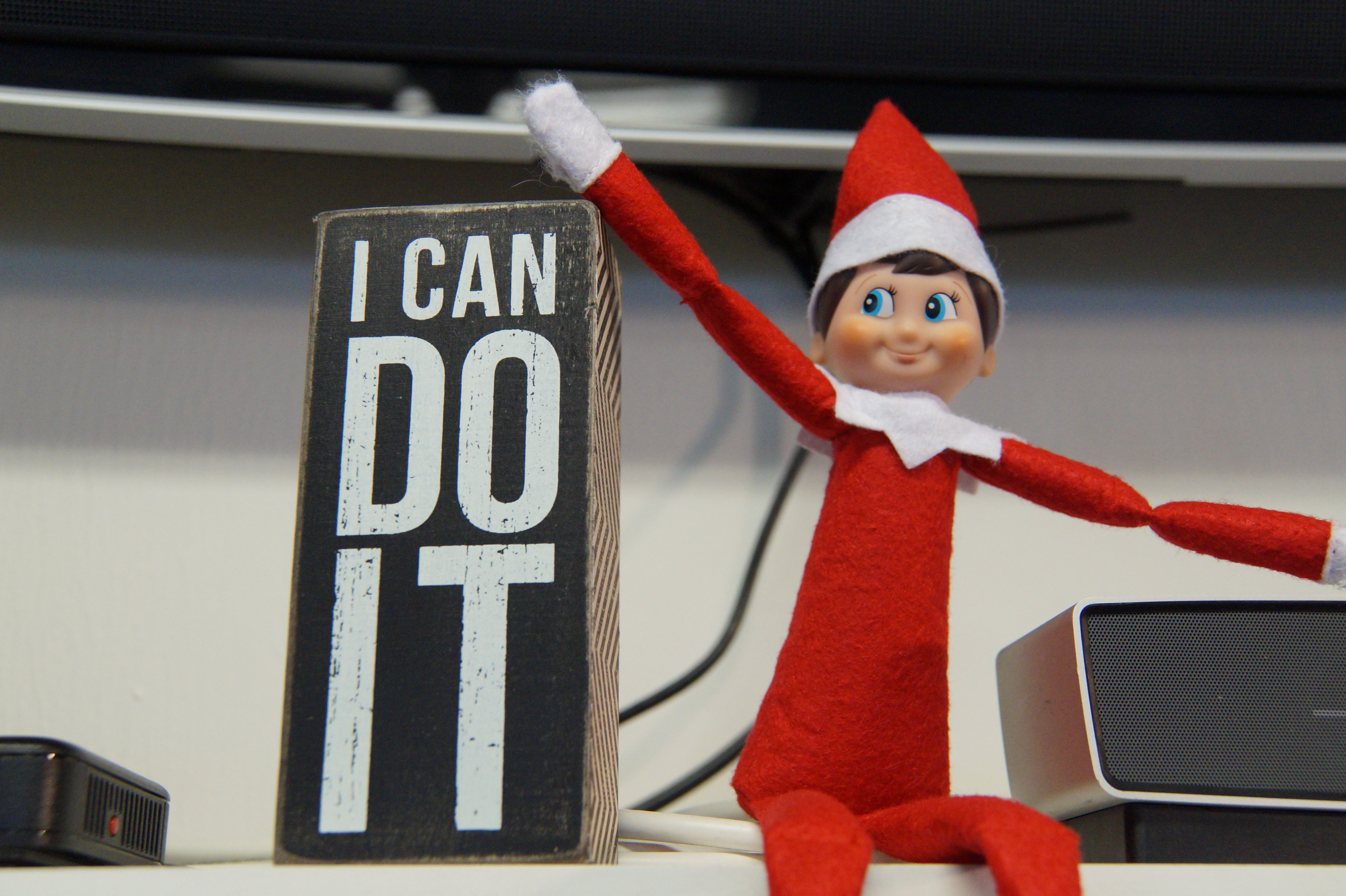 I am an elf in Santa's Workshop, and Santa sent me to Get 2 the Core  Fitness to work with Sonia and to inspire my journey to get off my shelf.